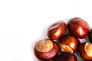 FMCG Marketing Moments - Conkers against a white background